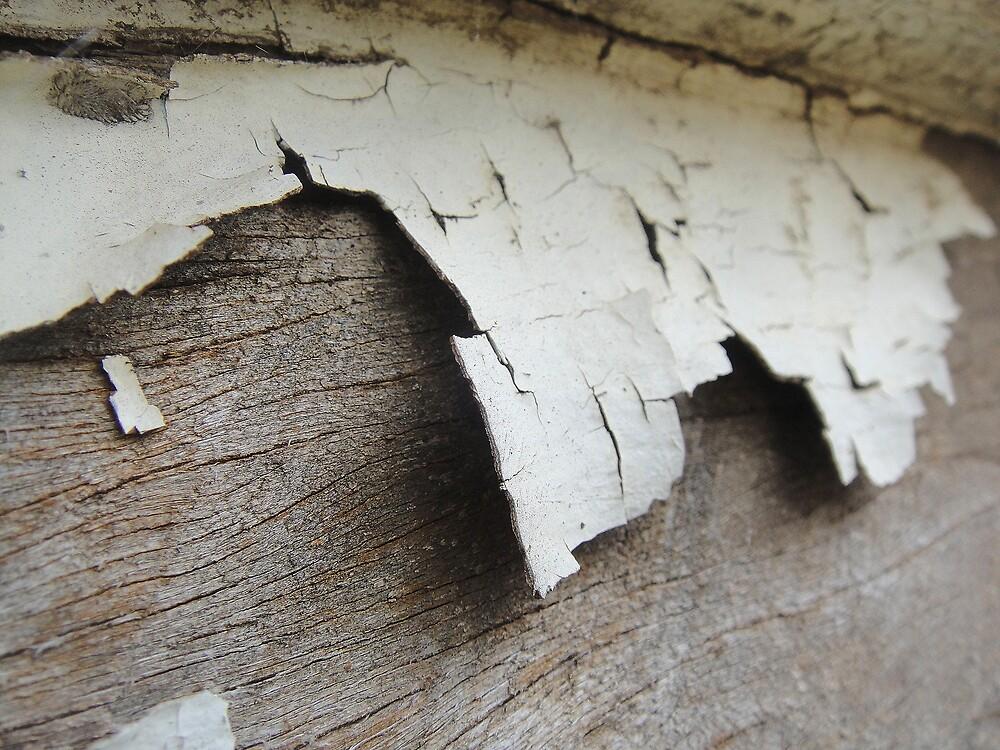 Fractured Whitewash by Melissa Park