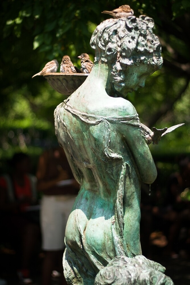Birds at Burnett Fountain by W. Lotus