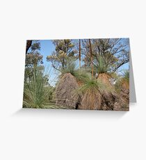Victorian Forest of Grass Trees Greeting Card