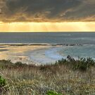 Great Ocean Road: Anglesea by Lawrie McConnell
