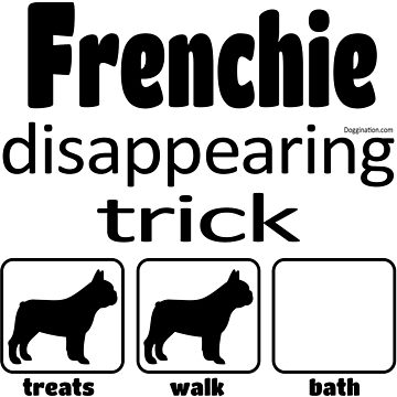 Frenchie disappearing trick  by doggination