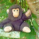 Navigator Monkey by Vivian Eagleson