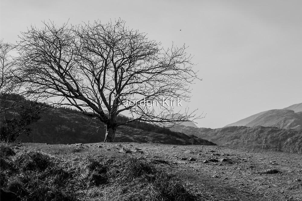"""""""A Photo Stop"""" by Jordyn Kirk"""
