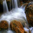 Bhatta Falls by Vivek Bakshi