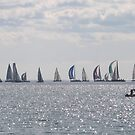 A colourful Yacht flotilla, glittery sea. Winters Day. by Rita Blom