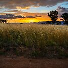 Sunset over the Brindabellas - 2 by Stuart Row