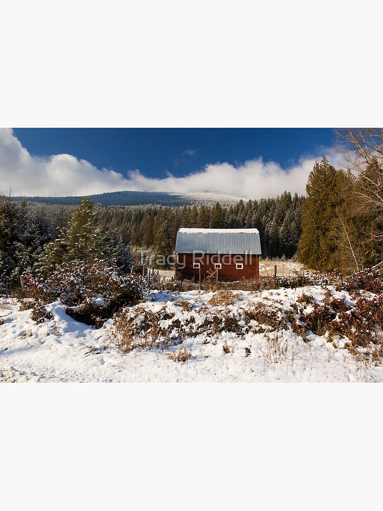 Red Barn in Winter by taos