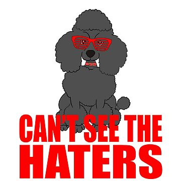 Perfect Gift For Dog Breed Poodle Lover T-shirt Design Can't see The Haters For Poodle Enthusiast by Customdesign200