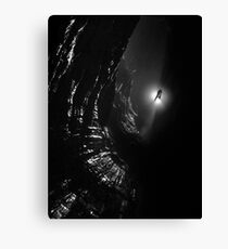 Looking down Titan's Great Cave Canvas Print