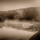 Misty River Morning by photograham