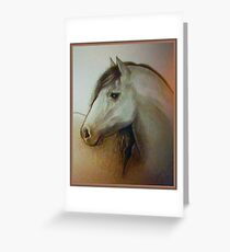 Horse head drawing Greeting Card