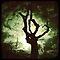 The Tree challenge