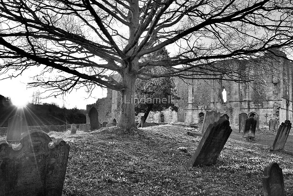 Under The Shadow of Easby Abbey by Lindamell