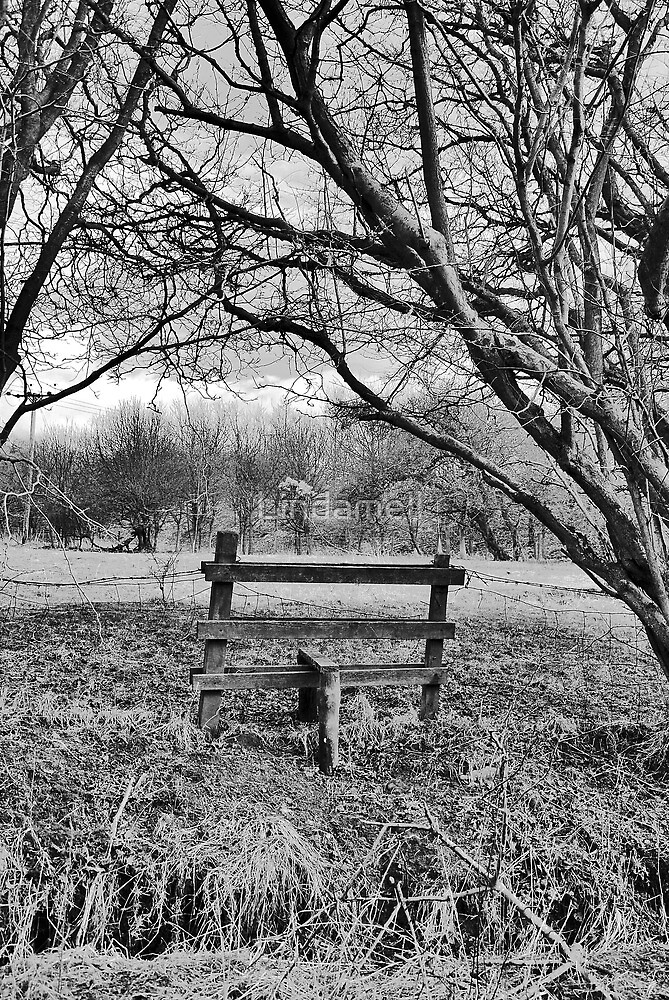 Wobbly Old Stile by Lindamell