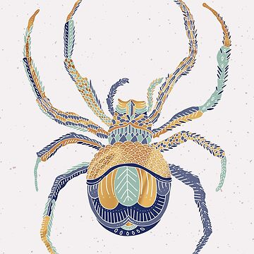Spider  by fernandaschalle