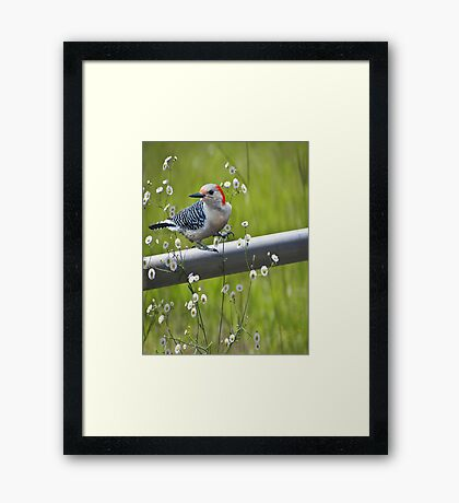 I Love Spring Framed Print