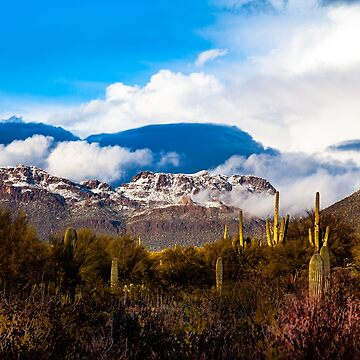 Tucson snow - #1 by designfly