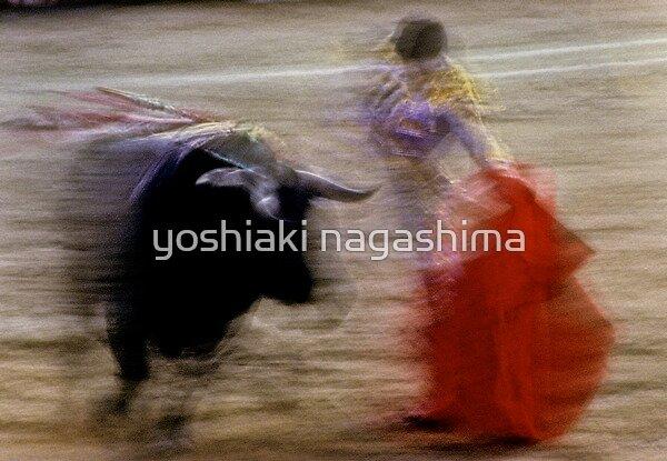 Bullfighting−14、SPAIN by yoshiaki nagashima