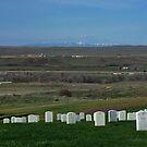 Little BigHorn Battlefield, Montana, USA by AnnDixon