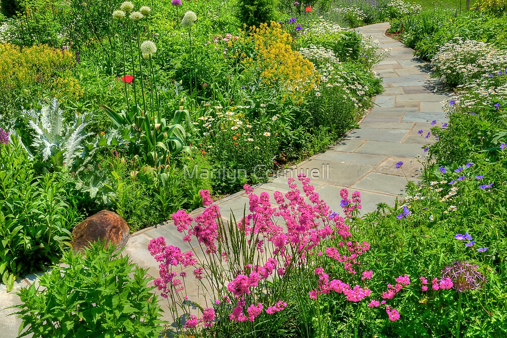 Chanticleer Perennial Walk by Marilyn Cornwell