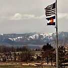 America the Beautiful by Barb Miller