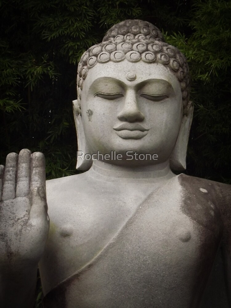 The Buddha by Rochelle Stone