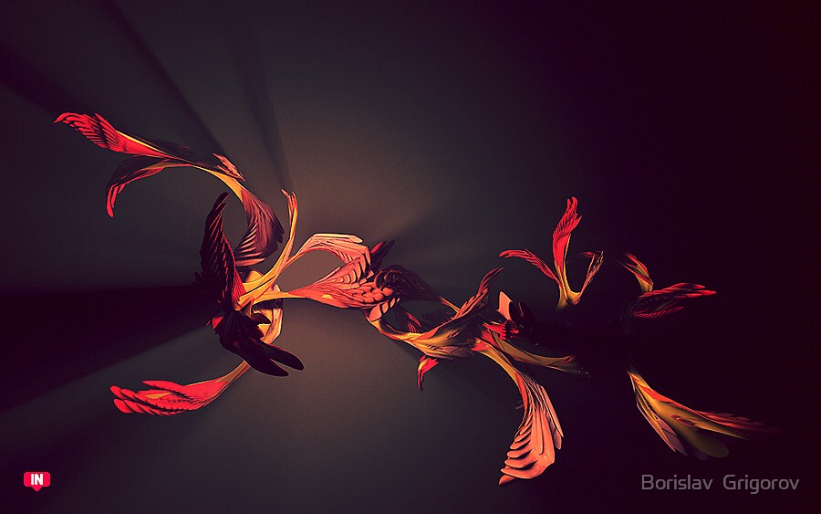 Fibre by Borislav  Grigorov