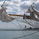 Through the Masts by Monnie Ryan