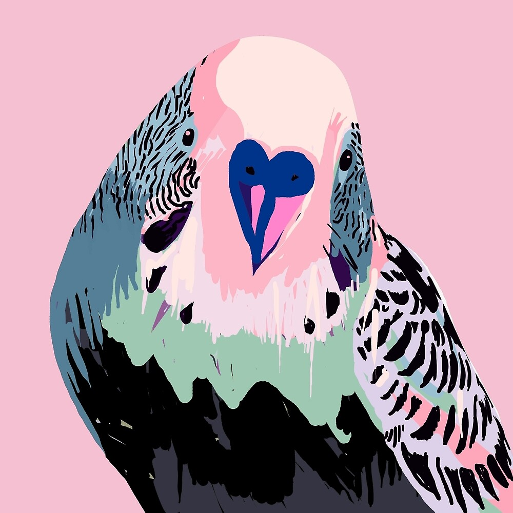 Budgie in Pink by Tim Mane