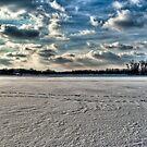 Across The Winter by Eric Scott Birdwhistell