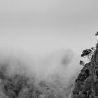 The Tree on the edge of the cloud by Ralph Goldsmith