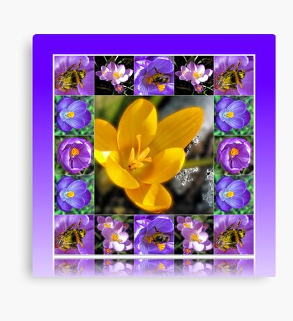 Bee, Crocus and Melting Snow Collage in Reflection Frame Leinwanddruck