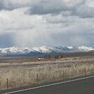 SNOW STORM over Eastern Oregon Peak by Dave Sandersfeld