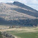 Masked Gorilla Head Rock over Mt. Vernon, OR,USA by Dave Sandersfeld
