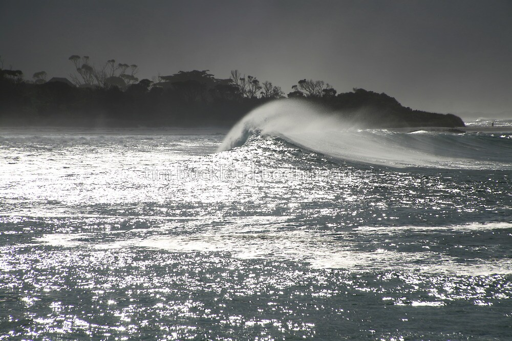 swell. redbill beach, bicheno, tasmania by tim buckley | bodhiimages