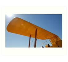 de Havilland Tiger Moth Art Print