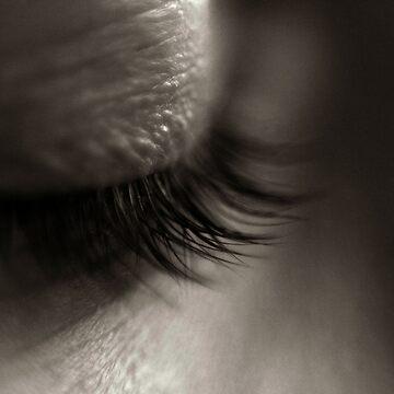 ~ she sees ~ by skeeter