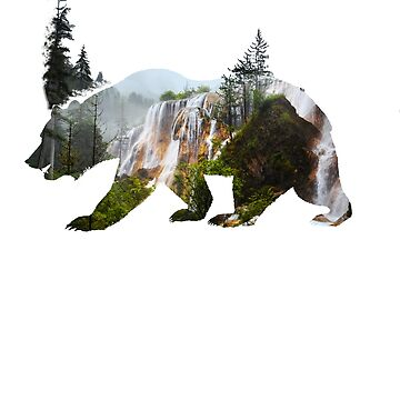 grizzly bear brown bear forest outdoor california national park waterfall hiking nature protection wild hunting by originalstar