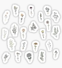 Pegatina Conjunto de flores diminutas