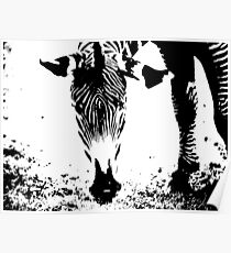 The Art of Black and White Stripes Poster
