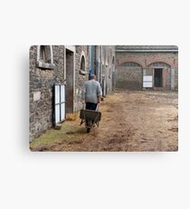 Man pulling a wheelbarrow Metal Print