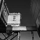 The bridge by Tony  Glover