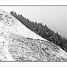 Snowy hillside by Tony  Glover