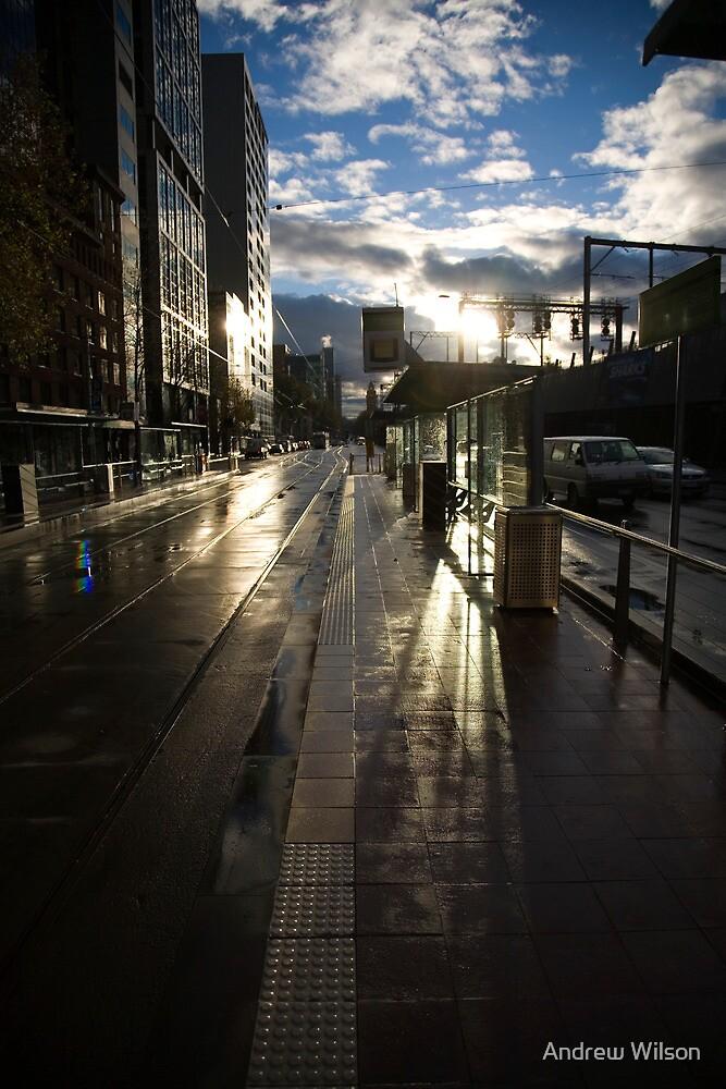 Tram Stop by Andrew Wilson