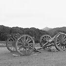 Meunna Wagon by phillip wise