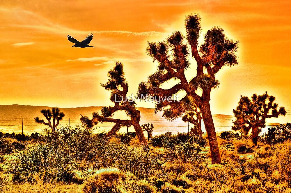 The Joshua Tree by LudaNayvelt