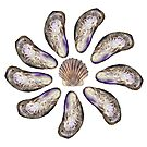 Circle of Shells (mussels and scallop) by Tamara Clark