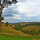 Gippsland Ranges, looking East from Strzelecki.. by johnrf