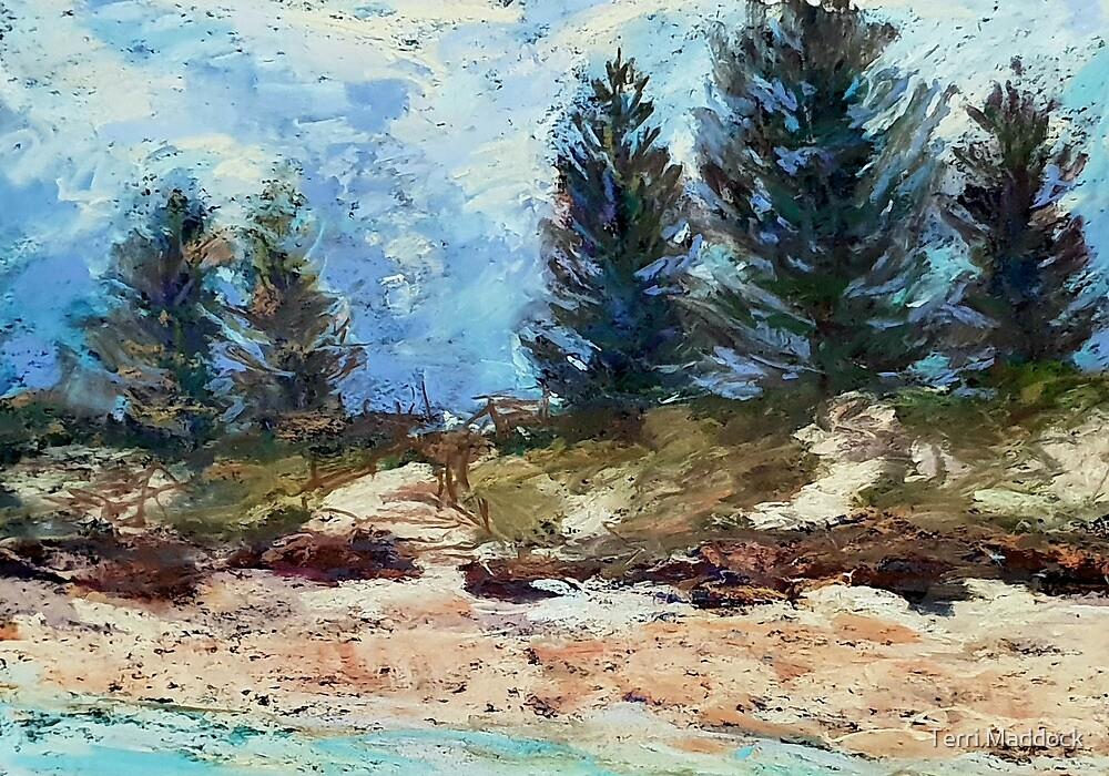 Storm brewing - Lake Cathie Beach by Terri Maddock