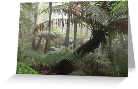 Cathedral of Ferns in Mist card by KenRinkel